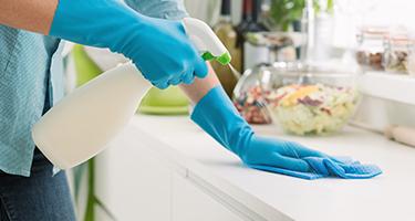 Kitchen Cleaning Handy
