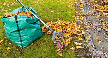 Yard Work Help Yard Cleanup Handy