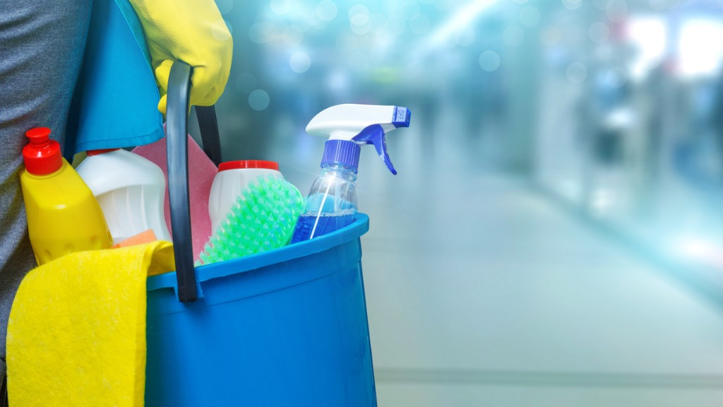 Cleaning lady with a bucket and cleaning products picture id870219332