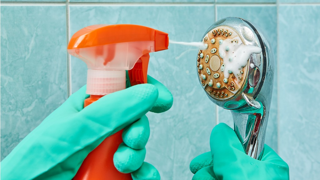 Cleaning the head of shower with a foamy liquid closeup picture id939328594